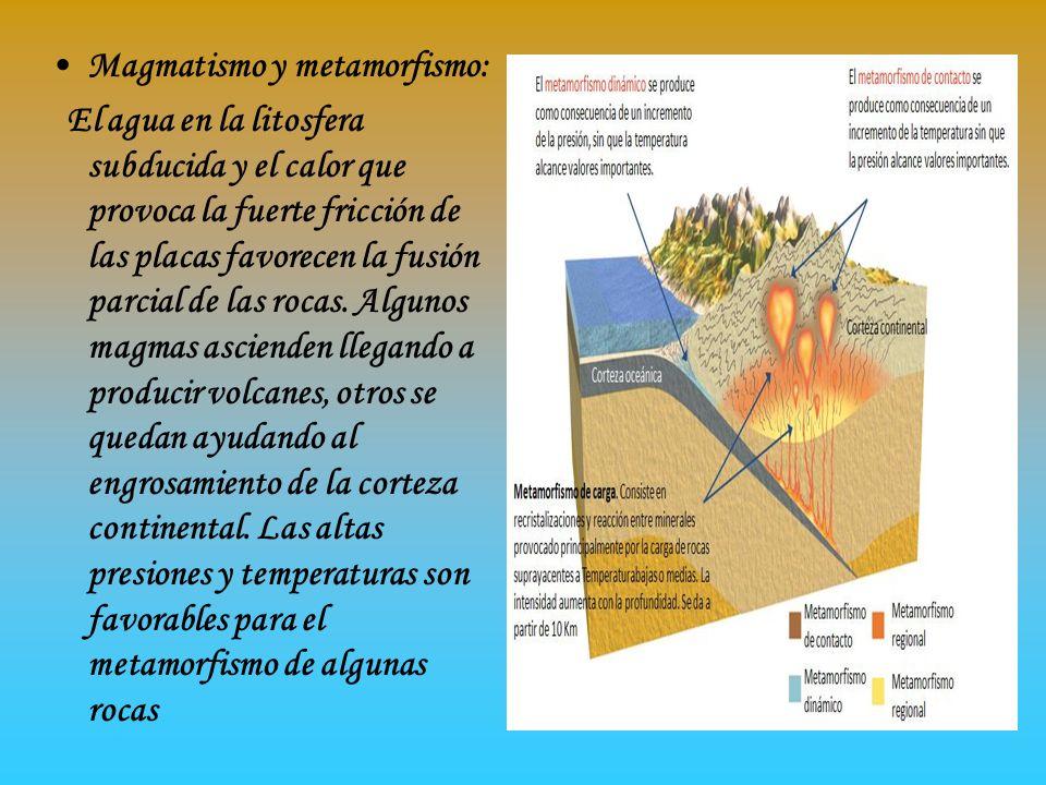 Elevación del orógeno: El relieve montañoso de la cordillera es el resultado de: -El engrosamiento de la corteza continental producido por la acumulación de materiales sedimentarios, su plegamiento, fractura y actividad magmática -La elevación isostática producida al engrosarse la corteza con estos materiales, menos densos que los del manto