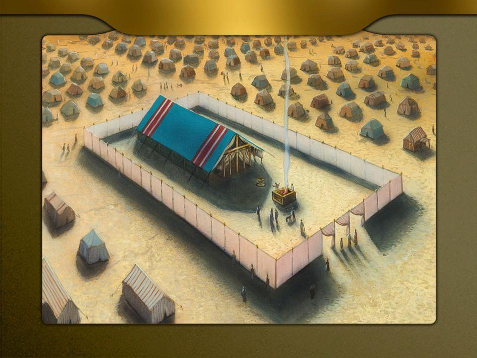 El ser humano: Templo/Arca La ley en medio del corazón.