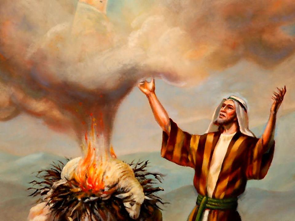 Características: De madera de acacia: Madera ligera, pero dura e incorruptible Diccionario de la Biblia, Ed.