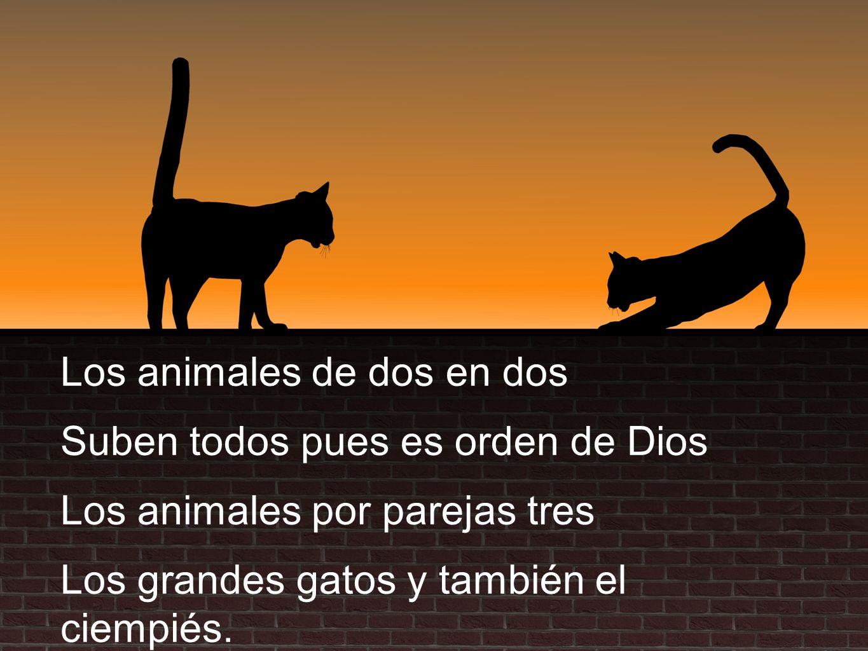 Los animales de dos en dos Suben todos pues es orden de Dios Los animales por parejas tres Los grandes gatos y también el ciempiés.