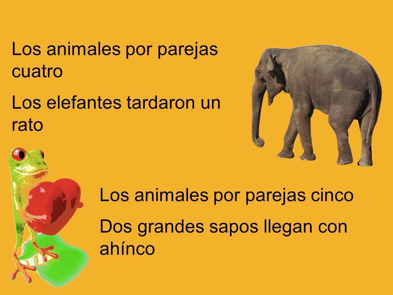 Los animales por parejas cuatro Los elefantes tardaron un rato Los animales por parejas cinco Dos grandes sapos llegan con ahínco