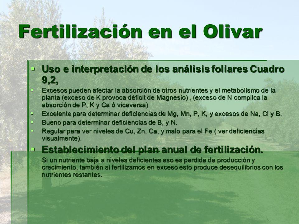 Fertilización en el Olivar Uso e interpretación de los análisis foliares Cuadro 9,2, Uso e interpretación de los análisis foliares Cuadro 9,2, Excesos