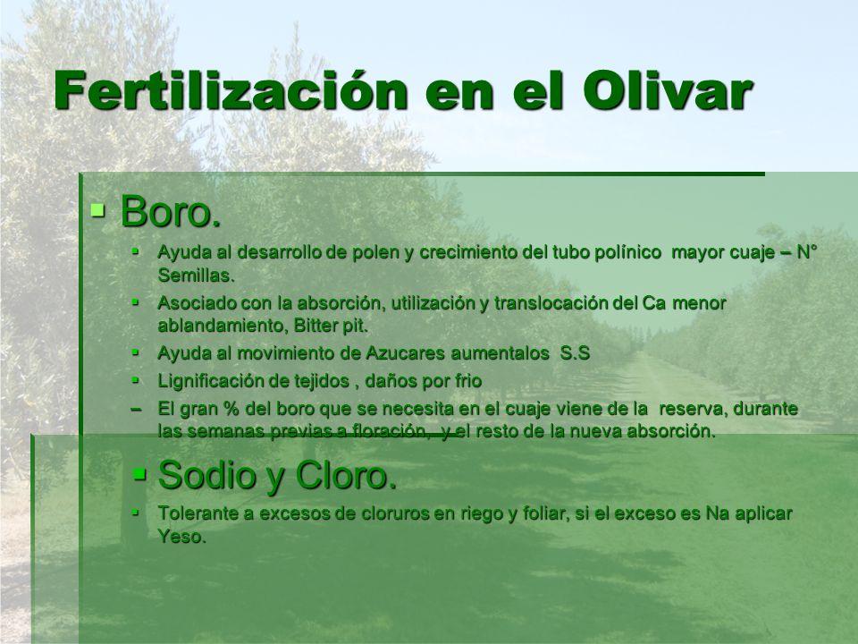 Fertilización en el Olivar Boro. Boro. Ayuda al desarrollo de polen y crecimiento del tubo polínico mayor cuaje – N° Semillas. Ayuda al desarrollo de