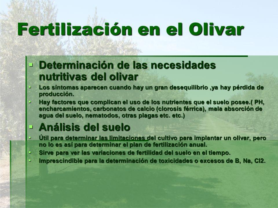Fertilización en el Olivar Análisis foliares (figura 9.1) Análisis foliares (figura 9.1) Mejor método de diagnóstico del estado nutricional del olivar.
