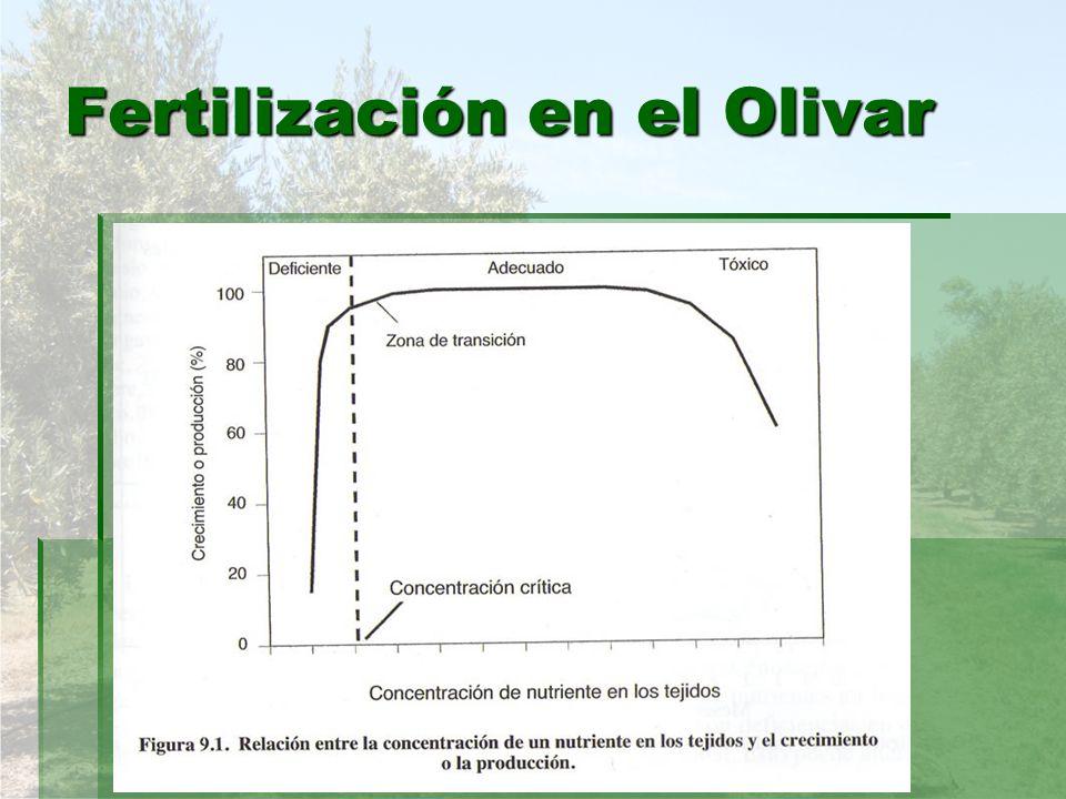CINC.CINC. Ayuda al desarrollo de polen y del tubo polínico.