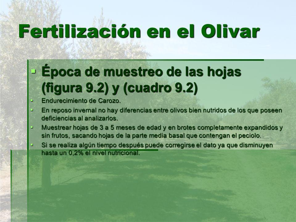 Fertilización en el Olivar Boro.Boro.
