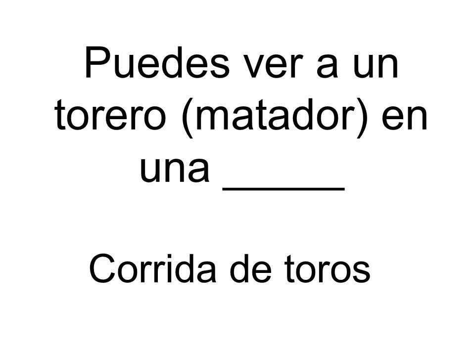 Puedes ver a un torero (matador) en una _____ Corrida de toros