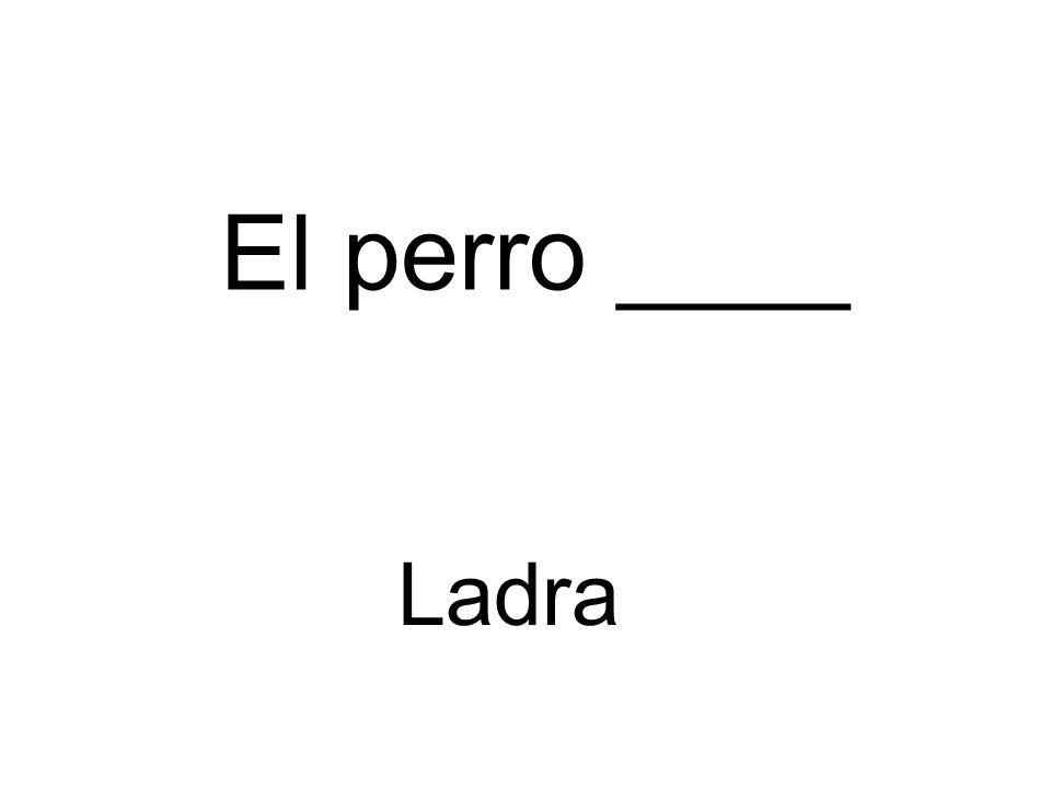 El perro ____ Ladra