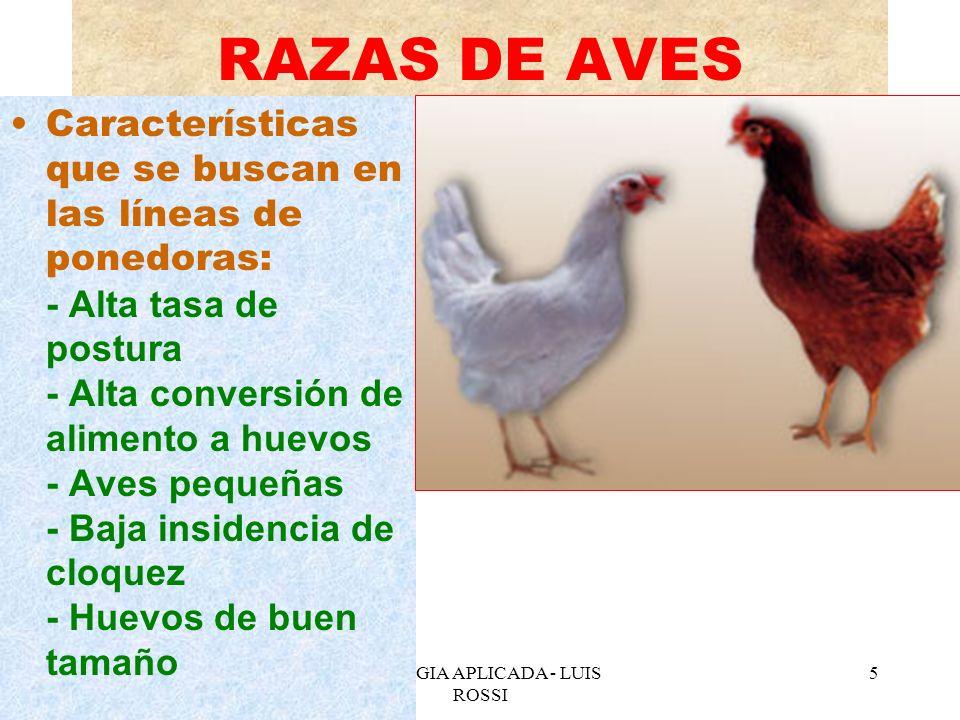 BIOLOGIA APLICADA - LUIS ROSSI 6 AVICULTURA ASPECTOS NUTRICIONALES Las aves digieren con rapidez, para hacer el recorrido desde la boca hasta la cloaca, el contenido del tubo digestivo tarda unas 2 ½ horas en la gallina ponedora y de 8 a 12 horas en la no ponedora.