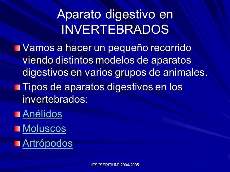 Aparato digestivo en INVERTEBRADOS Vamos a hacer un pequeño recorrido viendo distintos modelos de aparatos digestivos en varios grupos de animales. Ti