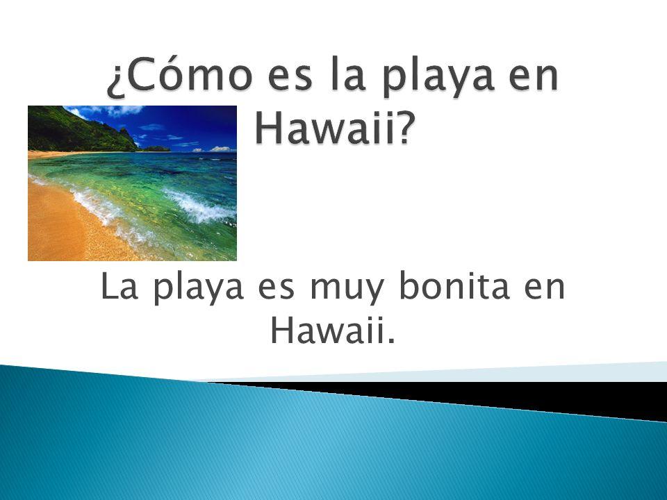 La playa es muy bonita en Hawaii.