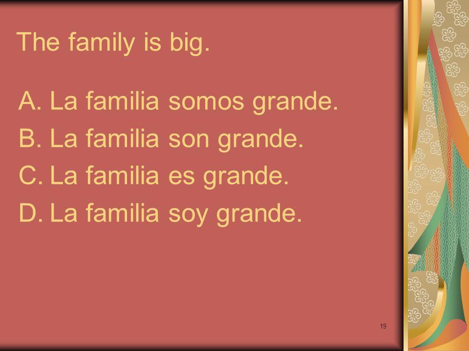 19 The family is big. A.La familia somos grande. B.La familia son grande. C.La familia es grande. D.La familia soy grande.