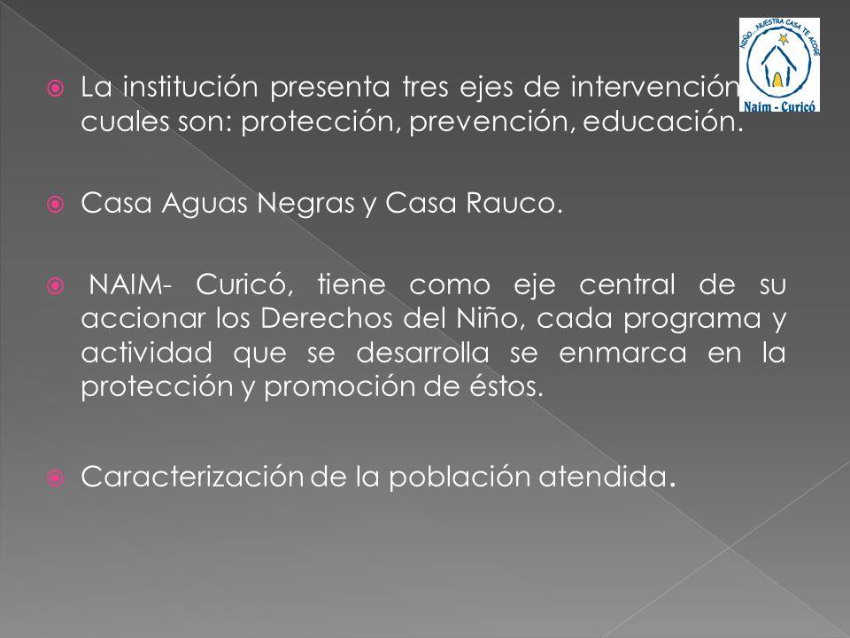 La institución presenta tres ejes de intervención los cuales son: protección, prevención, educación.