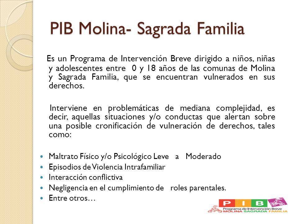 PIB Molina- Sagrada Familia Es un Programa de Intervención Breve dirigido a niños, niñas y adolescentes entre 0 y 18 años de las comunas de Molina y S