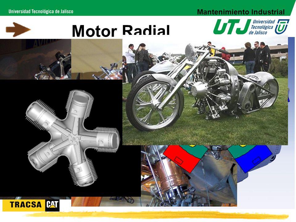 Los pistones van conectados alrededor del cigüeñal. Se utiliza principalmente en motores de aviones y en algunos vehículos especiales Motor Radial