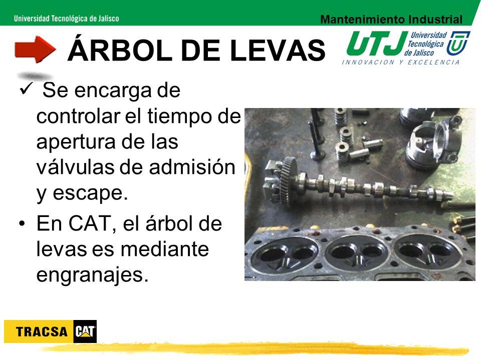 Se encarga de controlar el tiempo de apertura de las válvulas de admisión y escape. En CAT, el árbol de levas es mediante engranajes. ÁRBOL DE LEVAS M