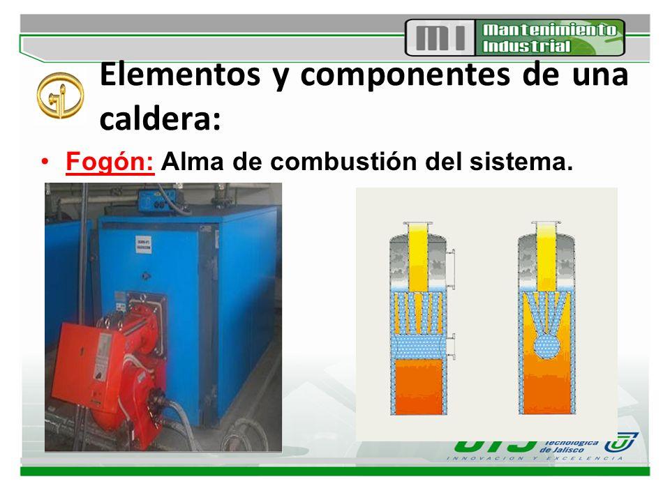Elementos y componentes de una caldera: Fogón: Alma de combustión del sistema.