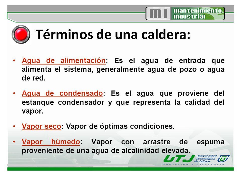 Elementos y componentes de una caldera: Condensador: Sistema que permite condensar el vapor.