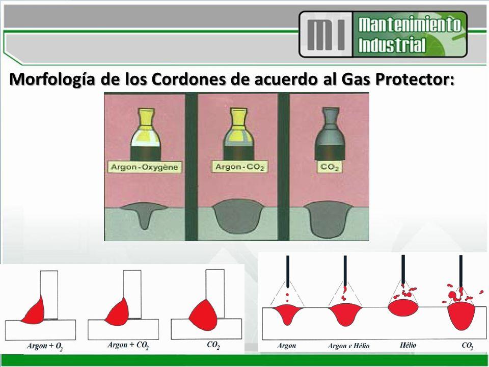 Morfología de los Cordones de acuerdo al Gas Protector: