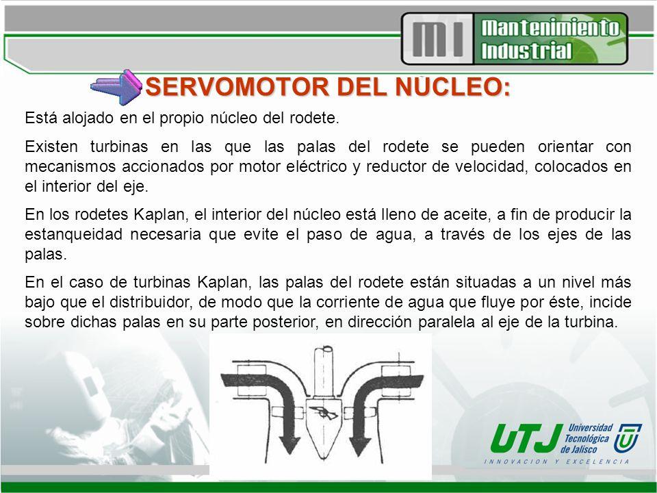 SERVOMOTOR DEL NÚCLEO: Está alojado en el propio núcleo del rodete. Existen turbinas en las que las palas del rodete se pueden orientar con mecanismos