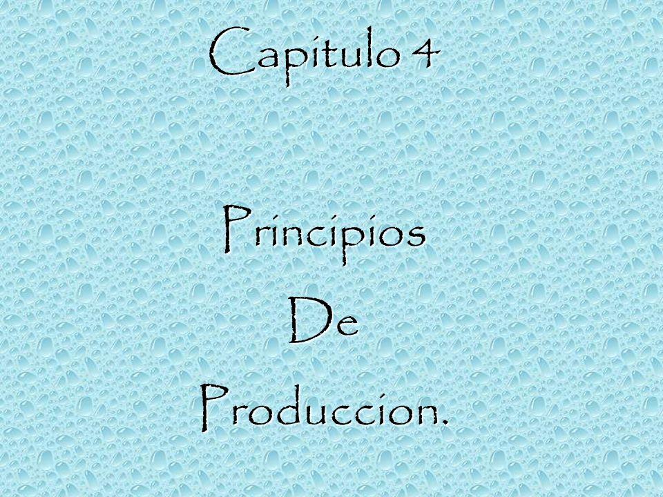 Capitulo 4 PrincipiosDeProduccion.