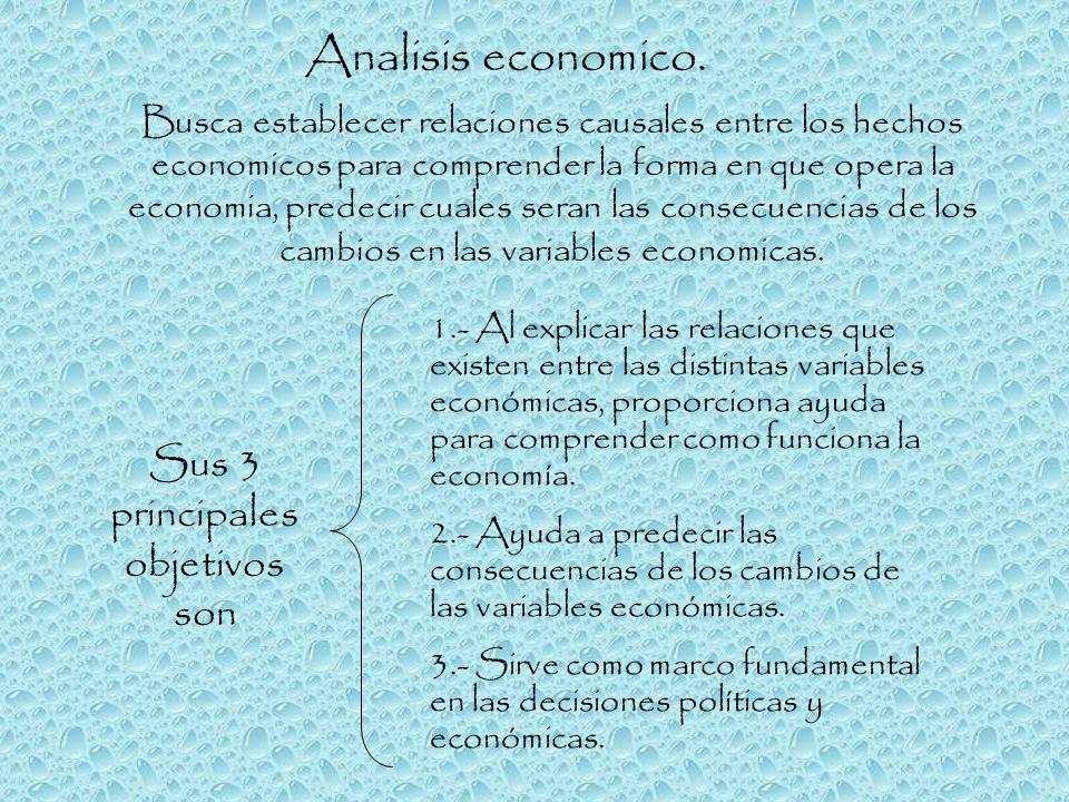 Analisis economico. Busca establecer relaciones causales entre los hechos economicos para comprender la forma en que opera la economia, predecir cuale