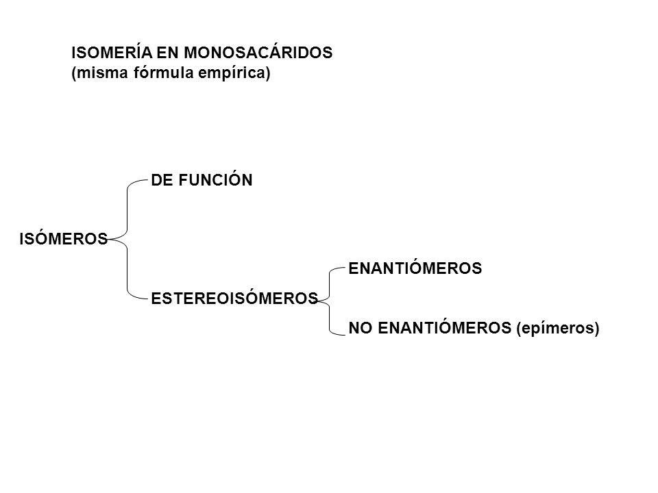DE FUNCIÓN ISÓMEROS ENANTIÓMEROS ESTEREOISÓMEROS NO ENANTIÓMEROS (epímeros) ISOMERÍA EN MONOSACÁRIDOS (misma fórmula empírica)