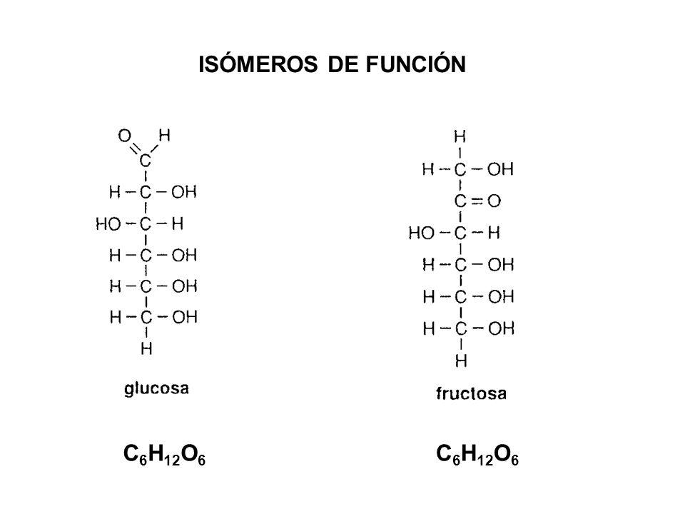 ISÓMEROS DE FUNCIÓN C 6 H 12 O 6