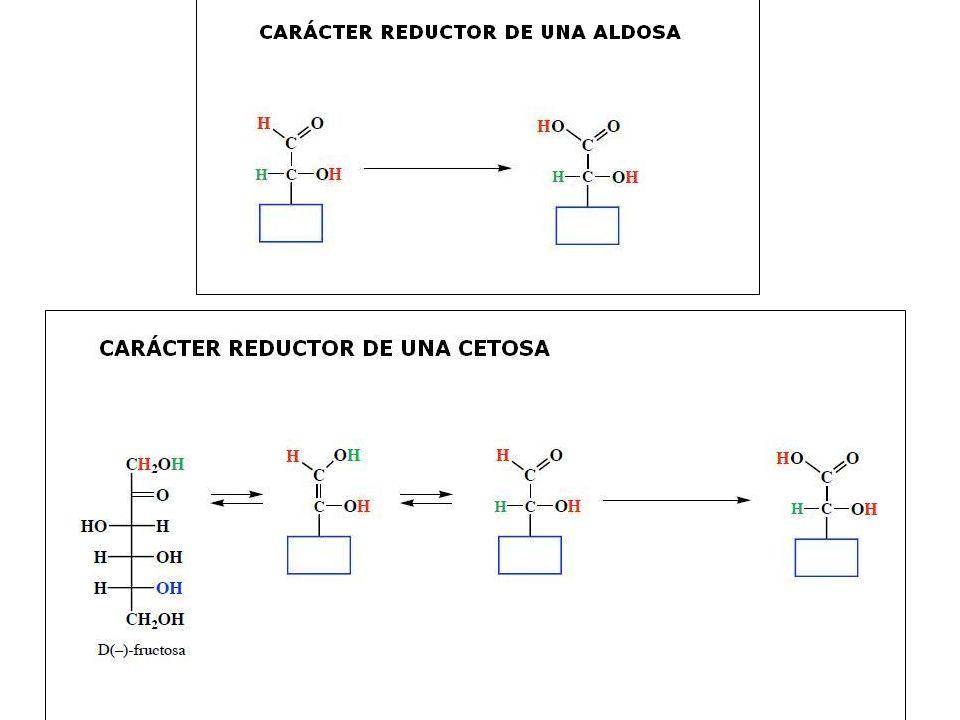 Tartrato sódico-potásico Sulfato de cobre