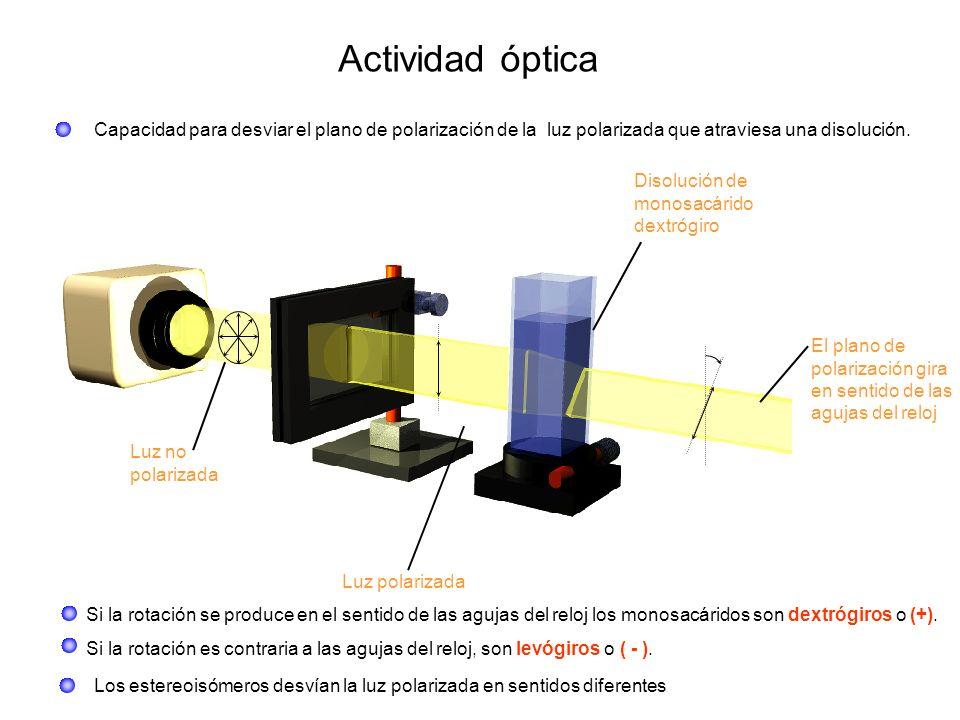 Actividad óptica Capacidad para desviar el plano de polarización de la luz polarizada que atraviesa una disolución. Luz no polarizada Luz polarizada D