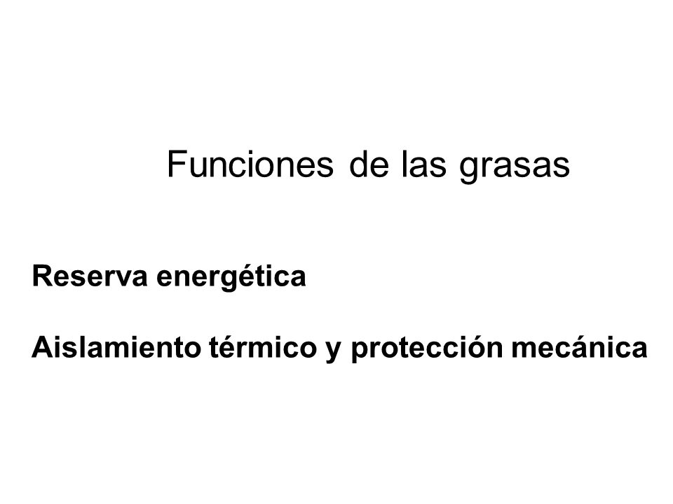 Funciones de las grasas Reserva energética Aislamiento térmico y protección mecánica