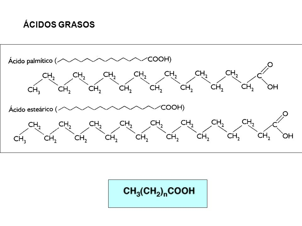 Triacilglicérido CH 2 CH CH 2 O O O R1R1 R2R2 R3R3 CO + 3 Na OH Sales de los ácidos grasos Na O O O R1R1 R2R2 R3R3 CO CH 2 CH CH 2 HO + Saponificación Glicerina+