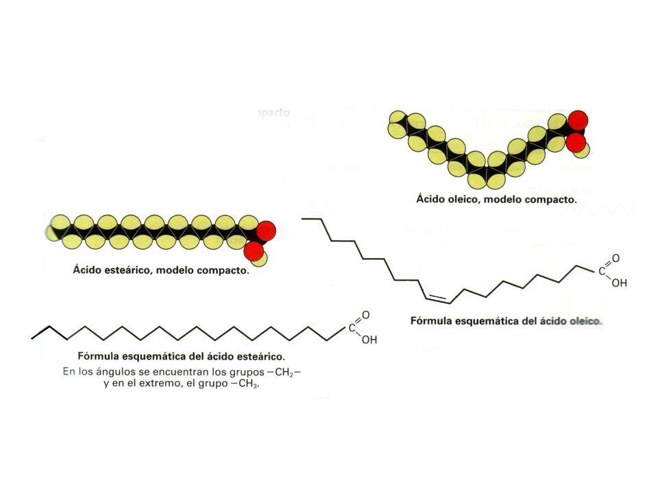 Concepto y clasificación de lípidos PROPIEDADES QUÍMICAS Constituidos por C, H, O, P y S.