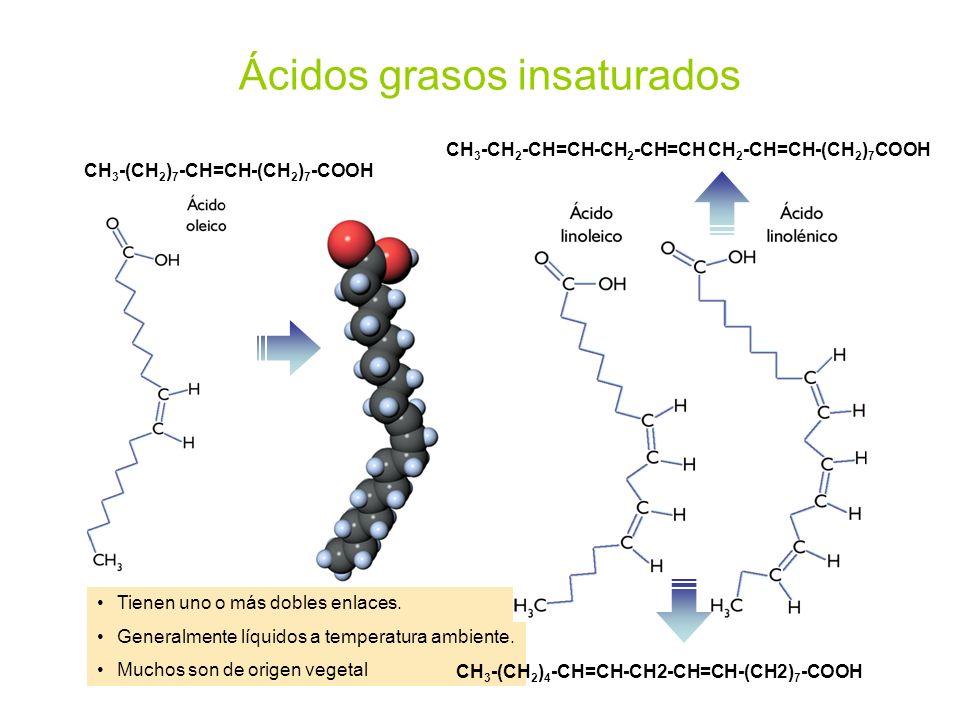 Tienen uno o más dobles enlaces. Generalmente líquidos a temperatura ambiente. Muchos son de origen vegetal Ácidos grasos insaturados CH 3 -(CH 2 ) 7