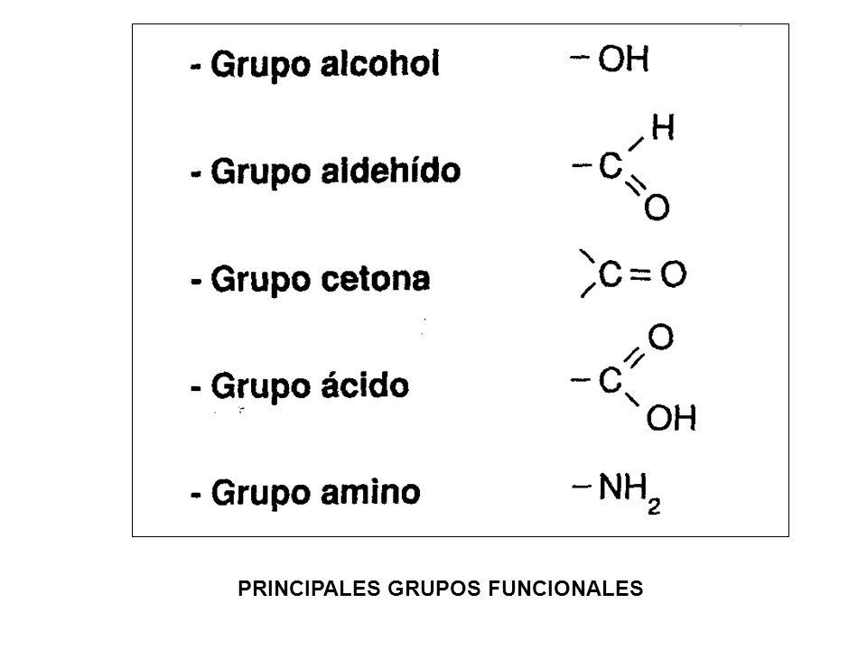 PRINCIPALES GRUPOS FUNCIONALES