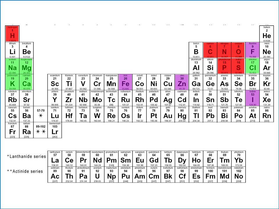 Bioelementos % en la materia vivaÁtomos Primarios 96,0%C, H, O, N, P, S Secundarios 3,9%Ca, Na, K, Cl, I, Mg, Fe Oligoelementos 0,1%Cu, Zn, Mn, Co, Mo, Ni, Si...