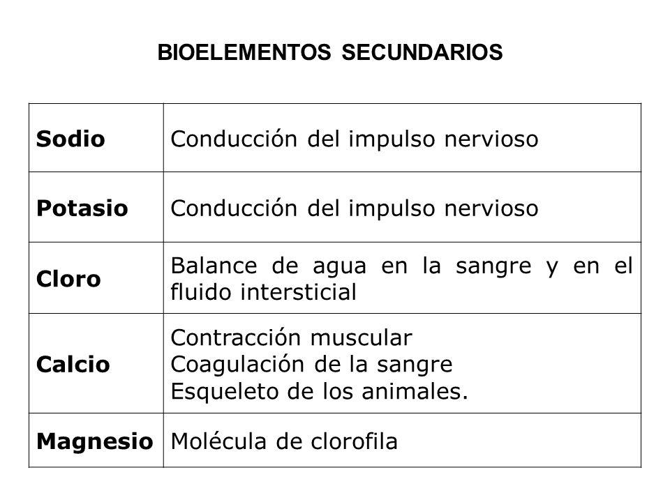 SodioConducción del impulso nervioso PotasioConducción del impulso nervioso Cloro Balance de agua en la sangre y en el fluido intersticial Calcio Cont