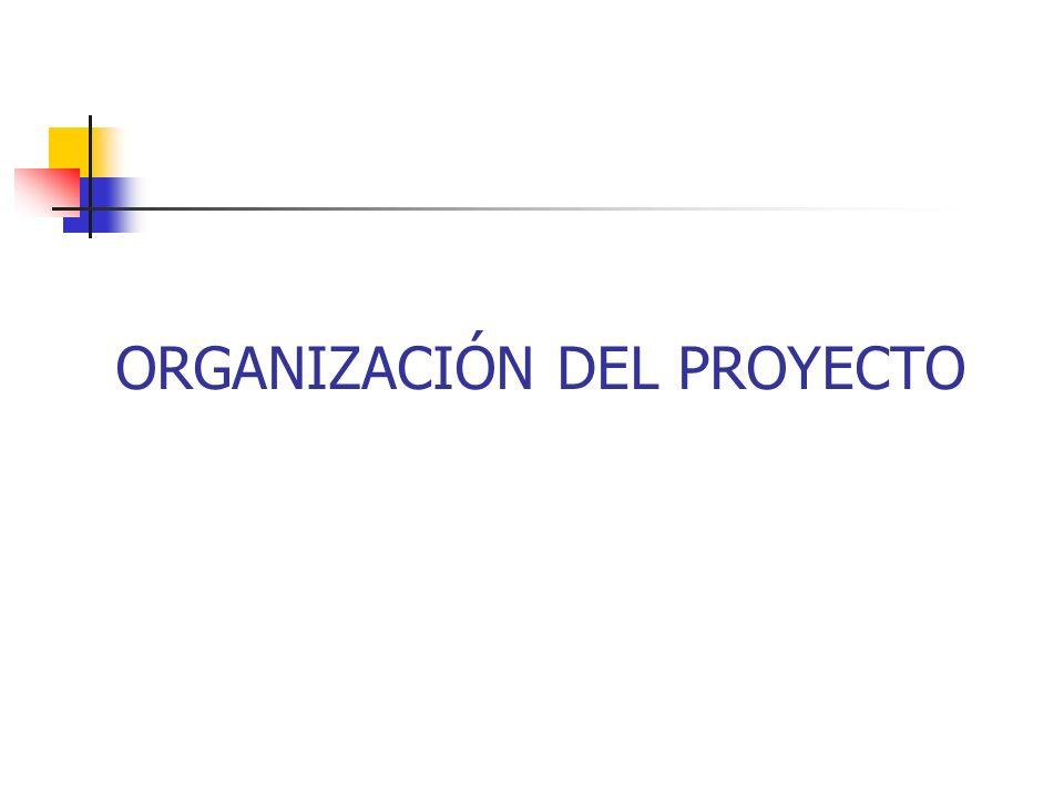 Organizar el proyecto Una vez que nuestra propuesta de proyecto ha sido aceptada, es preciso iniciar el proceso de organización, esto basado en tres aspectos: Reclutar Personal Adquirir recursos requeridos Definir las estrategias de monitoreo