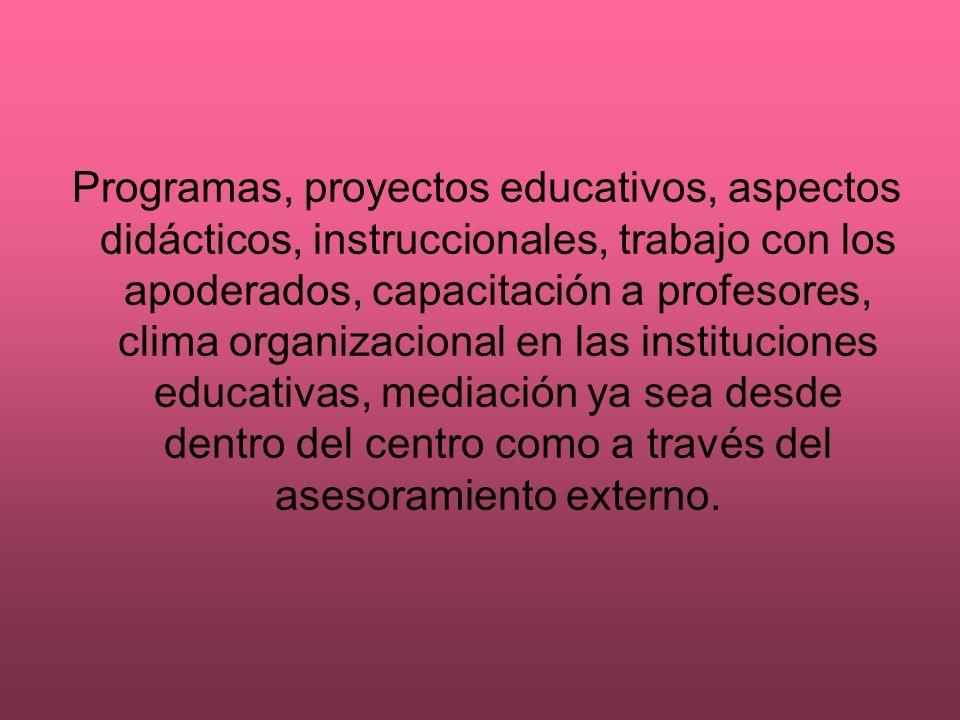 Programas, proyectos educativos, aspectos didácticos, instruccionales, trabajo con los apoderados, capacitación a profesores, clima organizacional en