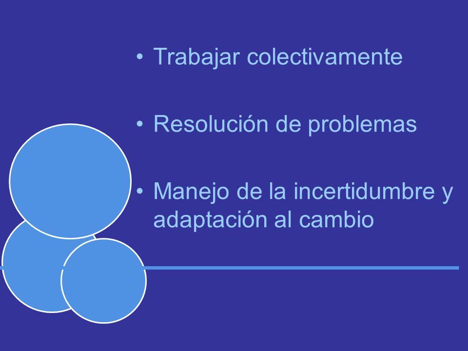 Trabajar colectivamente Resolución de problemas Manejo de la incertidumbre y adaptación al cambio