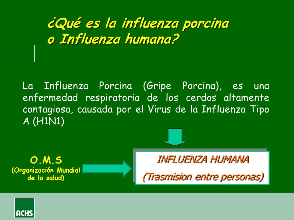 La Influenza Porcina (Gripe Porcina), es una enfermedad respiratoria de los cerdos altamente contagiosa, causada por el Virus de la Influenza Tipo A (