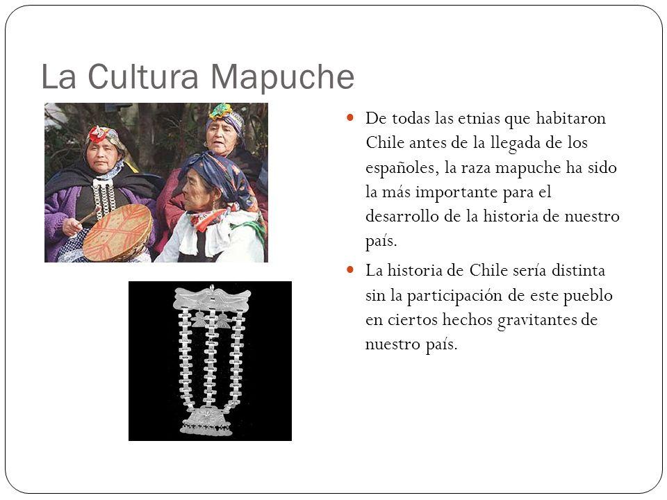 La Cultura Mapuche De todas las etnias que habitaron Chile antes de la llegada de los españoles, la raza mapuche ha sido la más importante para el des