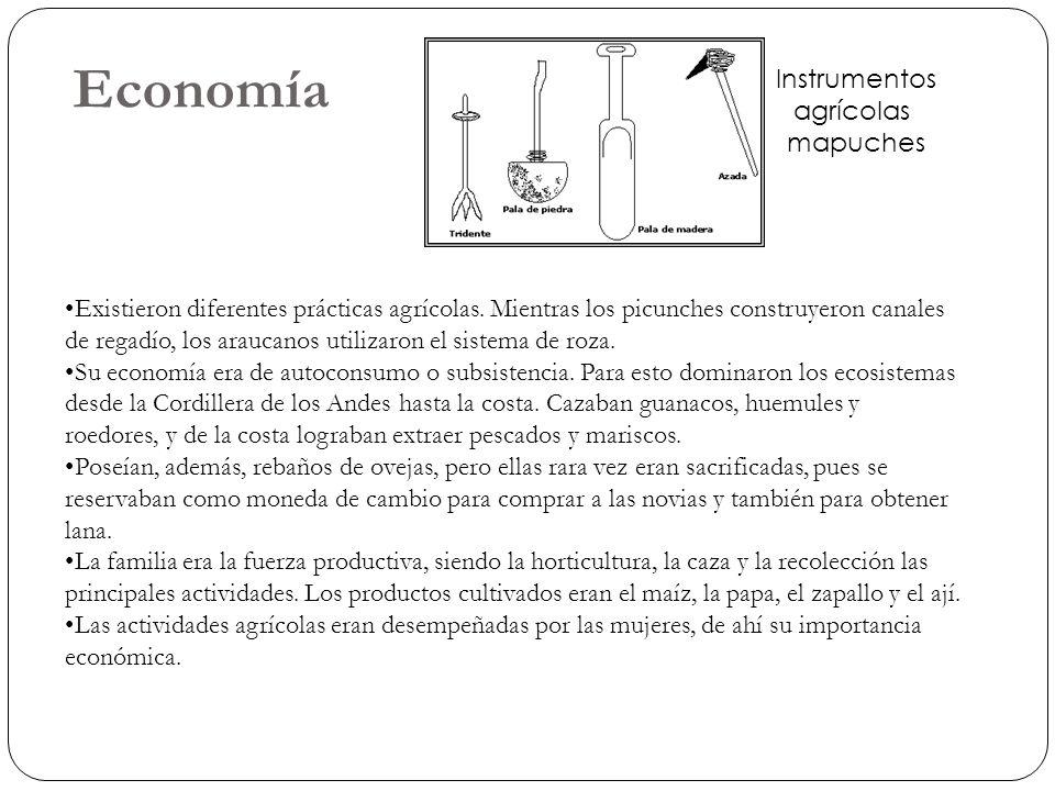 Economía Existieron diferentes prácticas agrícolas. Mientras los picunches construyeron canales de regadío, los araucanos utilizaron el sistema de roz