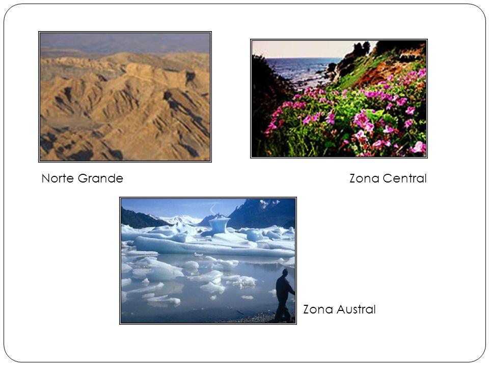 Zona Central Zona Austral Norte Grande