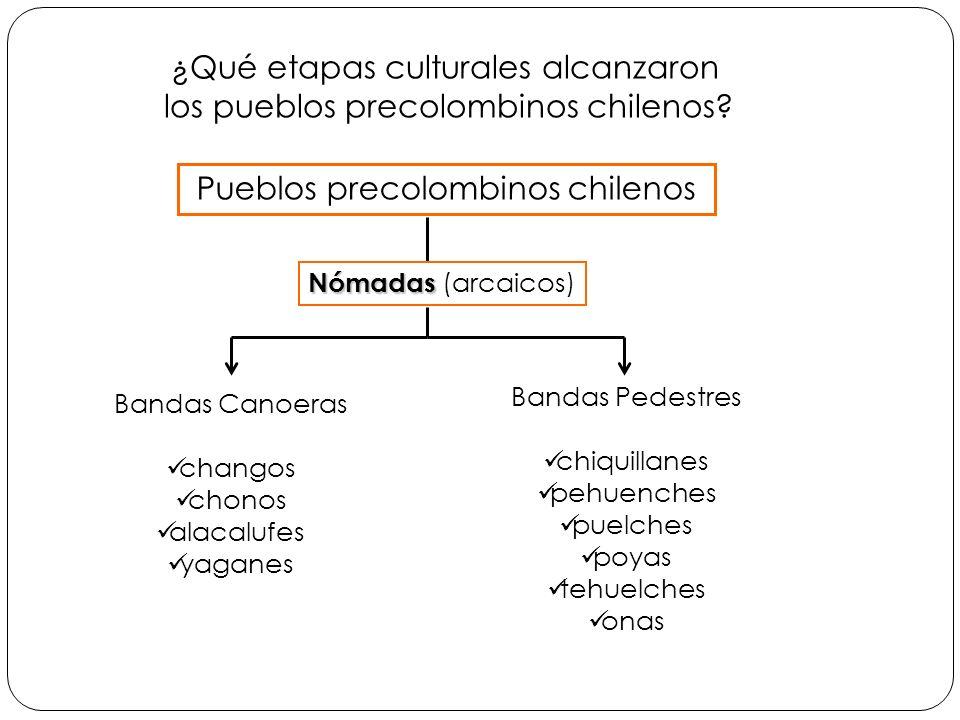 ¿Qué etapas culturales alcanzaron los pueblos precolombinos chilenos? Bandas Canoeras changos chonos alacalufes yaganes Pueblos precolombinos chilenos