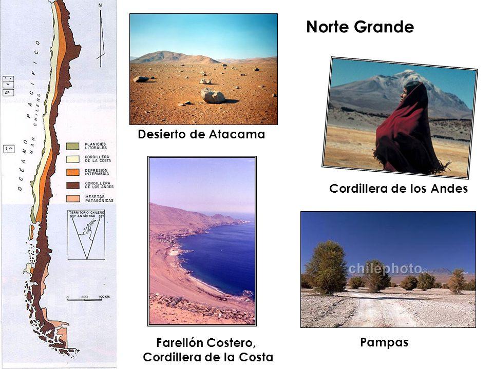 Norte Grande Farellón Costero, Cordillera de la Costa Cordillera de los Andes Desierto de Atacama Pampas