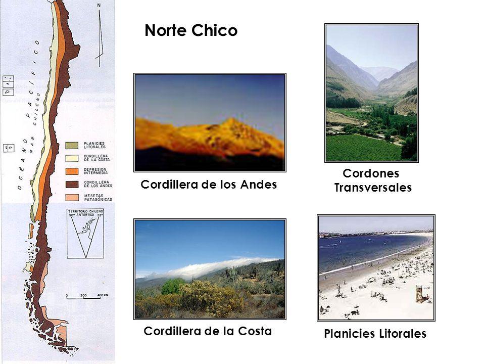 Norte Chico Cordillera de los Andes Cordillera de la Costa Planicies Litorales Cordones Transversales