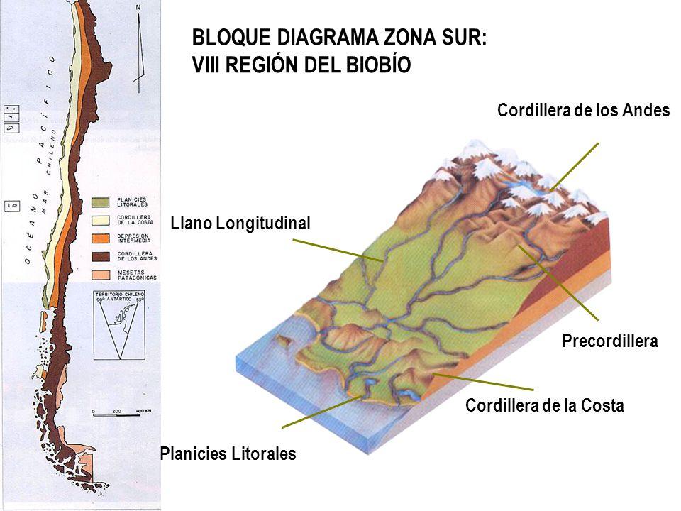 BLOQUE DIAGRAMA ZONA SUR: VIII REGIÓN DEL BIOBÍO Cordillera de los Andes Llano Longitudinal Cordillera de la Costa Planicies Litorales Precordillera