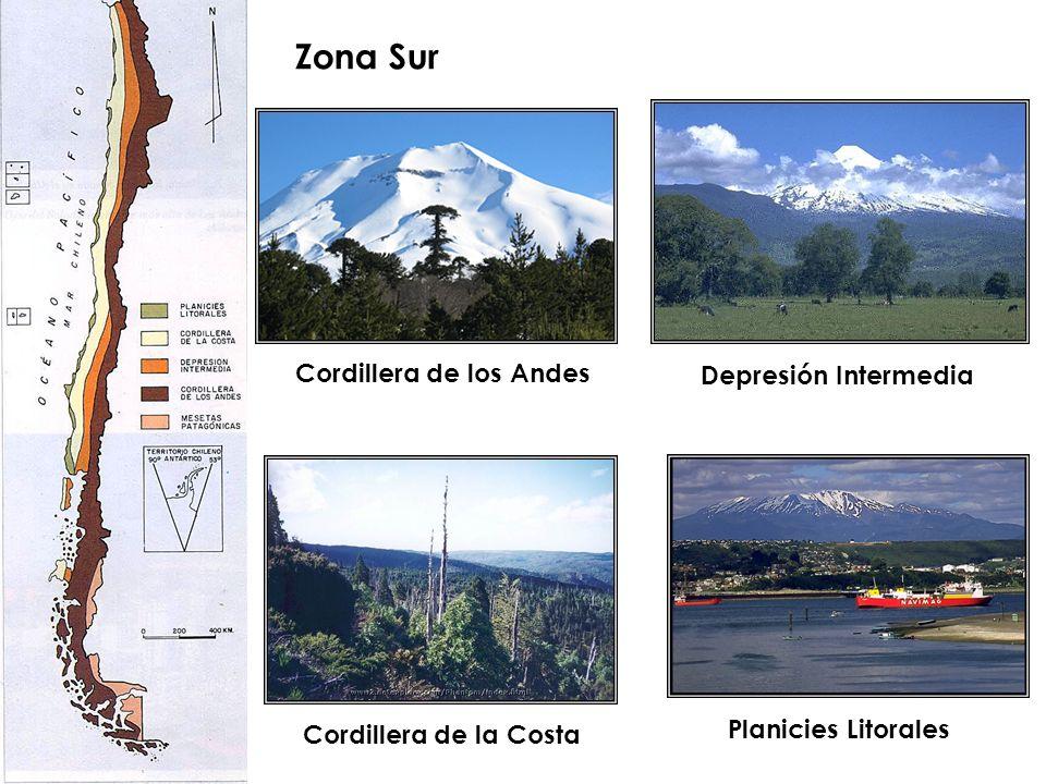 Zona Sur Cordillera de los Andes Depresión Intermedia Cordillera de la Costa Planicies Litorales
