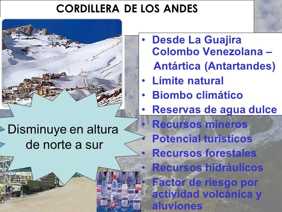 CORDILLERA DE LOS ANDES Desde La Guajira Colombo Venezolana – Antártica (Antartandes) Límite natural Biombo climático Reservas de agua dulce Recursos